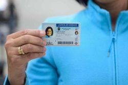 renovación de licencias